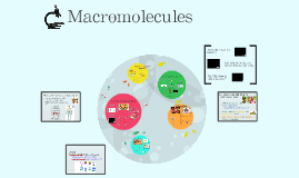 Copy of Macromolecules