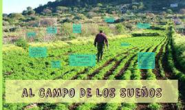 AL CAMPO DE LOS SUEÑOS