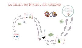 Copy of La Célula, sus partes y funciones