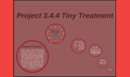 Project 3.4.4 Tiny Treatment