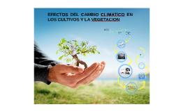 EFECTOS DEL CAMBIO CLIMATICO EN LOS CULTIVOS Y LA VEGETACION...