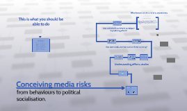 Conceiving media risks