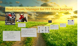 Head Groom/Manager for FEI Show Jumpers