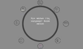 Copy of Хүн малын гоц халдварт Боом өвчин