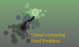 China's Growing Food Problem