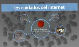 cuidados Del internet