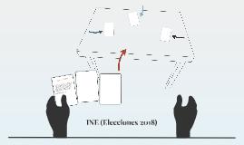 INE (Elecciones 2018)