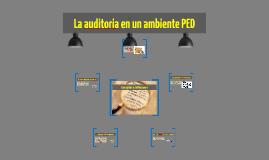 La auditoria en un ambiente PED