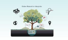Copy of Raleo Manual en Guayaba