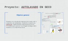 Copy of Proyecto: AUTOLAVADO EN SECO