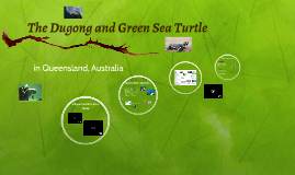 The Dugong and Green Sea Turtle