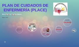 PLAN DE CUIDADOS DE ENFERMERIA (PLACE)