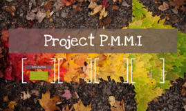 Project P.M.M.I