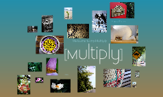 Copy of Multiply