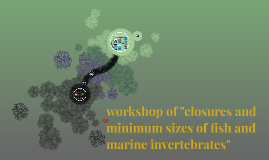 "workshop of ""closures and minimum sizes of fish and marine i"