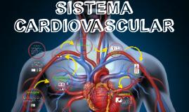 Sistema Circulatorio Q y F 2017