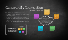 what is community immersion