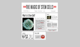 Copy of THE MAGIC OF STEM CELLS