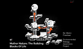 Mother Nature; The Building Blocks Of Life