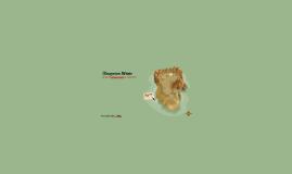 Ökosystem Wüste
