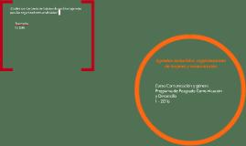 Agendas sectoriales, organizaciones de mujeres y comunicació