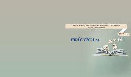 PRÁCTICA 14