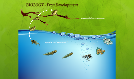 Copy of Reusable EDU Design: Biology