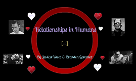 Relationship Project