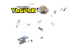 Copy of Mayoristas Yaguar