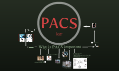 CSC 124 final project PACS