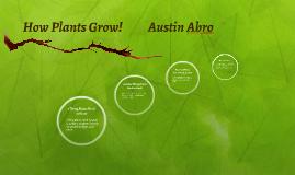 How Plants Grow!