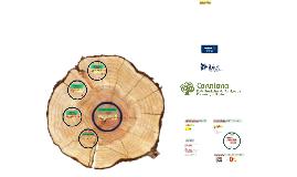 COLABORADORES da Rede Brasileira de Serviços de Preservação Digital