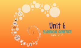 HB JAG Review: Unit 6