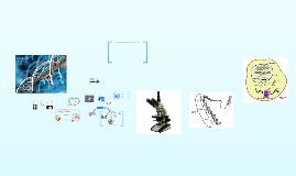 Copy of El genoma humano