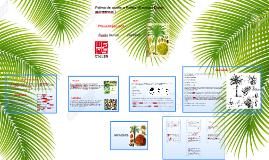Morfologia de la Palma de aceite o Palma africana