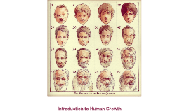 Introduction to human growth