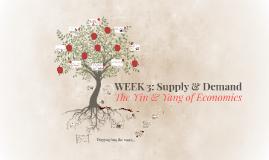 WEEK 3: Supply & Demand