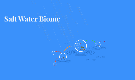 Salt Water Biome