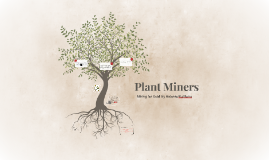 Plant Miners