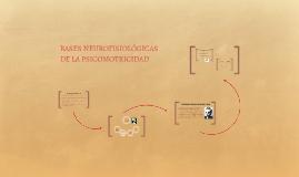 4. BASES NEUROFISIOLÓGICAS DE LA PSICOMOTRICIDAD