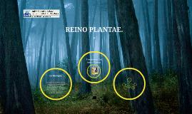 REINO PLANTAE.