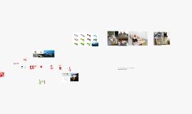 Processo de Projeto - do projeto à obra