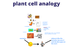 Copy of cell analogy