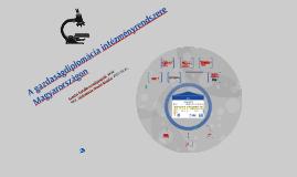 A gazdaságdiplomácia intézményrendszere Magyarországon