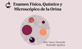 Copy of Examen Físico, Químico y Microscópico de la Orina