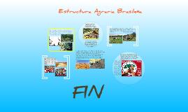 estructura agraria brasileña