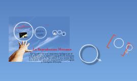 3º ciclo La Reproduccion Humana
