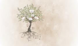 Copy of Farmacos que actuan sobre la piel y el organo de los sentido