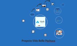 Proyecto Vida Bella Pachuca