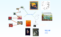 The Organisation of the Biosphere
